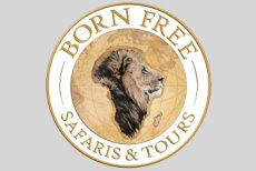 Born Free Safaris