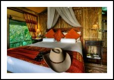 African Luxury Accommodations
